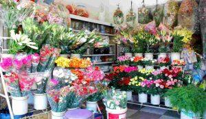 kinh doanh hoa tươi