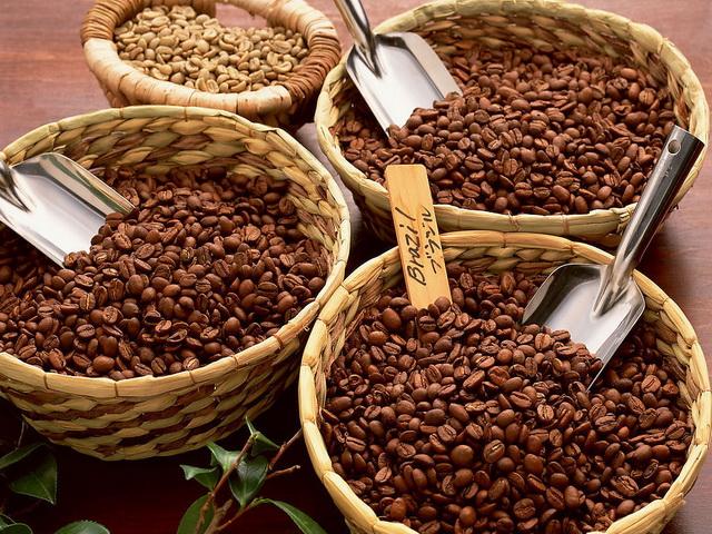 Image result for kind cafe bean