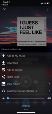 Amazon Music Downoad Option 310x671