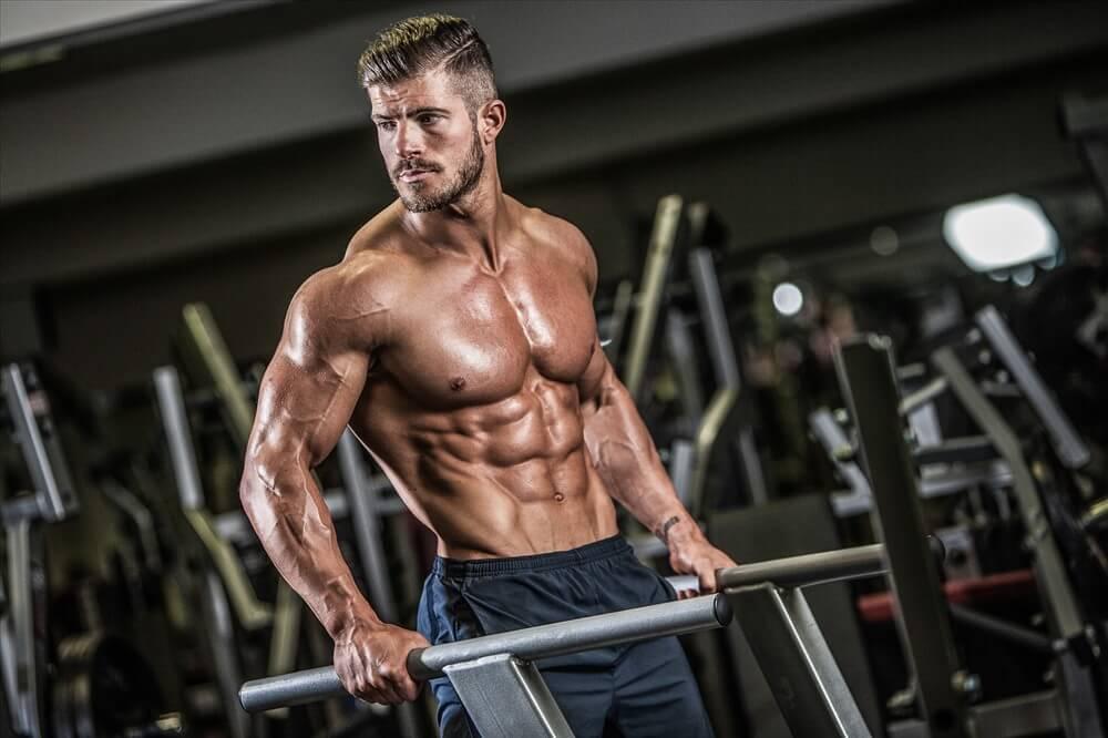 mau chatbot gym & fitness