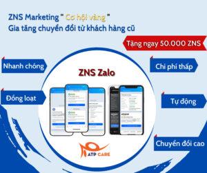 ZNS là gì